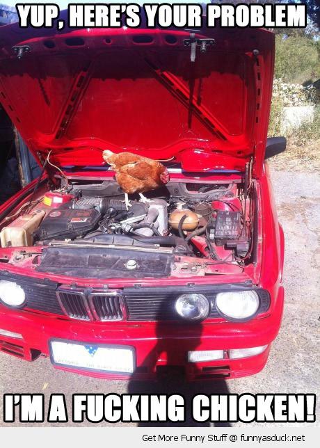 funny chicken mechanic car your problems pics 24 μυστικά για να κάψεις λιγότερη βενζίνη βενζίνη, πετρέλαιο