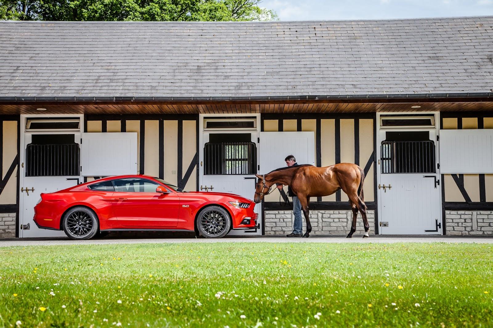 MustangDriveDeauville2015 14 Άνοδος Ευρωπαϊκών πωλήσεων για την Ford Ford, Sales, πωλήσεις, πωλήσεις αυτοκινήτων
