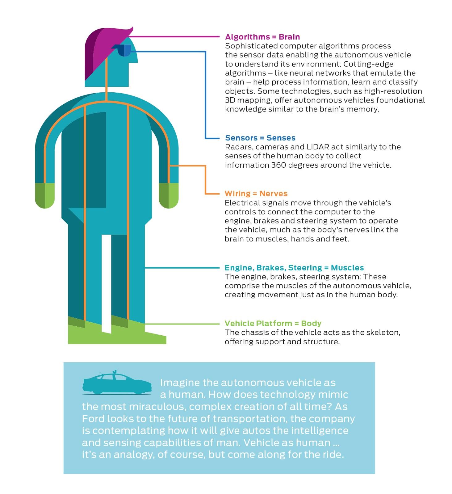 autonomous driving analogy