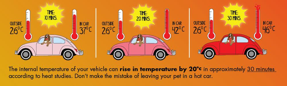Hot Car Temperature Τι να προσέξεις στο αυτοκίνητό σου με τον καύσωνα zblog, αυτοκίνητα, ζέστη, ΣΥΜΒΟΥΛΕΣ